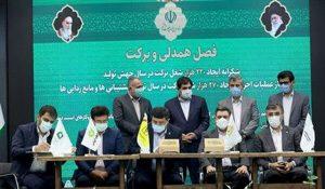 پرداخت ۱۲۵هزار فقره تسهیلات به مددجویان بنیاد برکت توسط بانک مهر ایران
